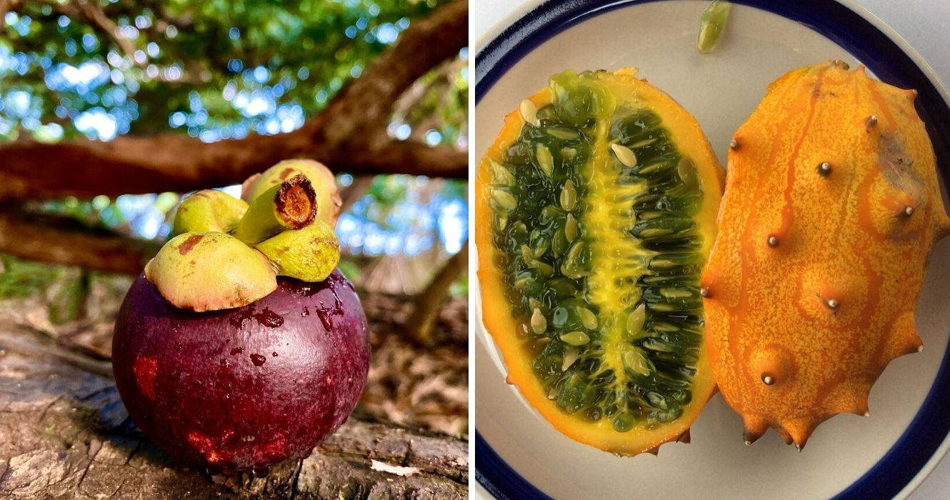 These Exotic Fruits Are Worth Traveling For And Here's ...