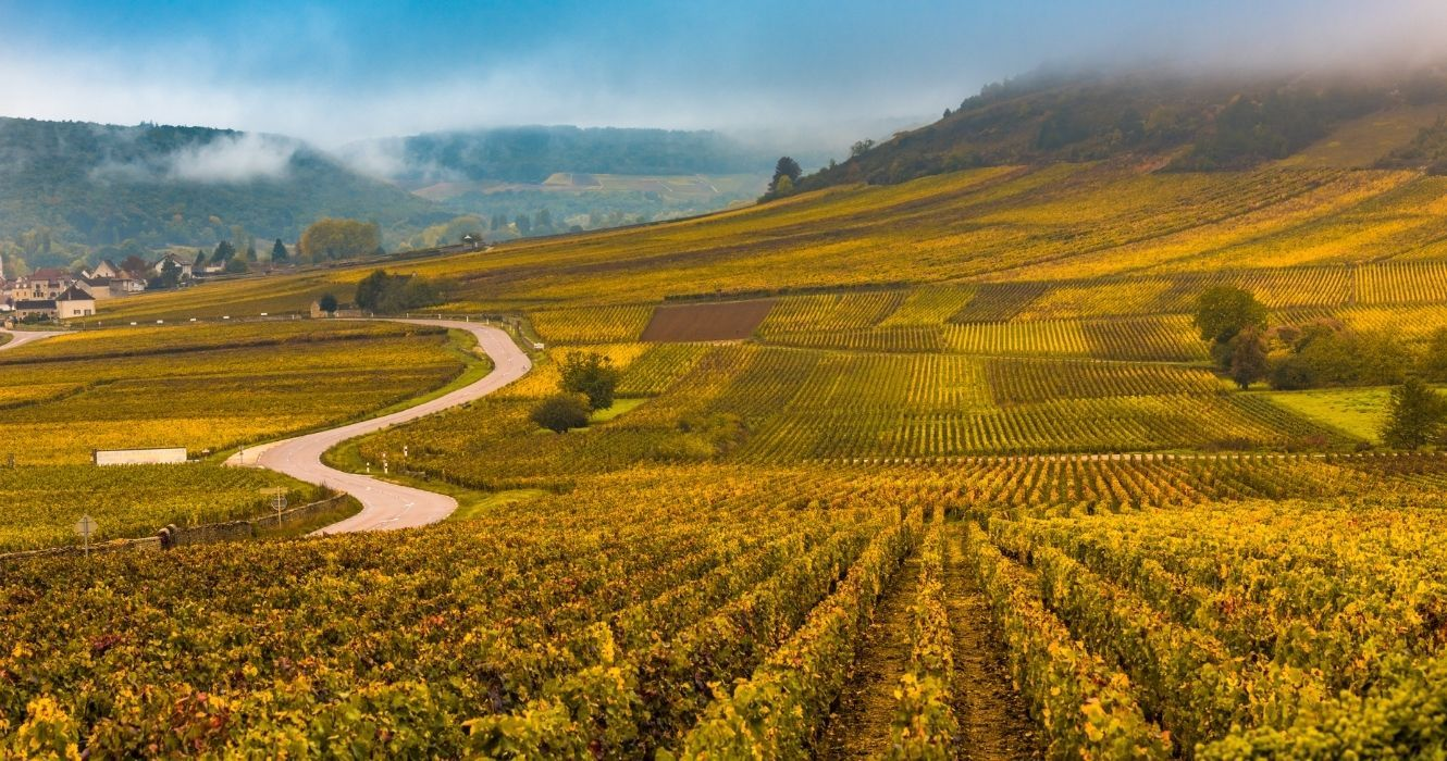 These Wineries Are Hailed As The Best In The French Alps, And You Should Be Visiting Them