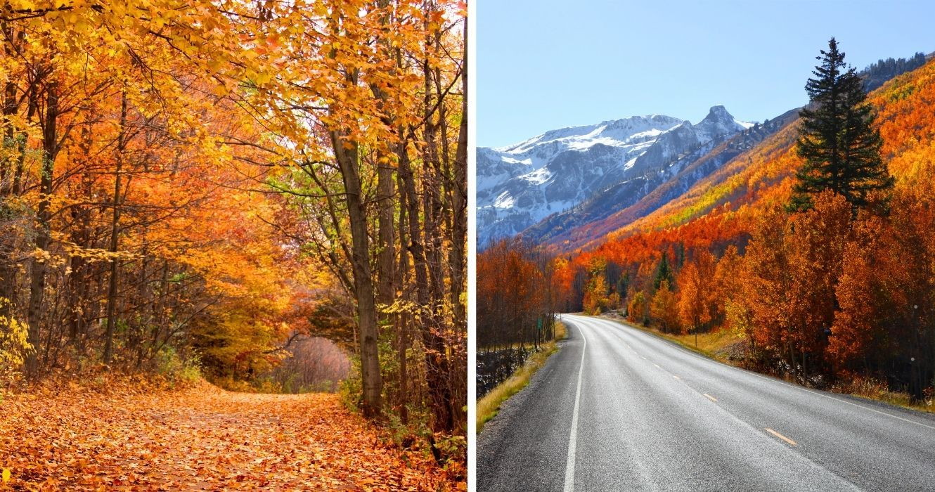 These States Are The Best Places To Catch 2021's Fall Foliage