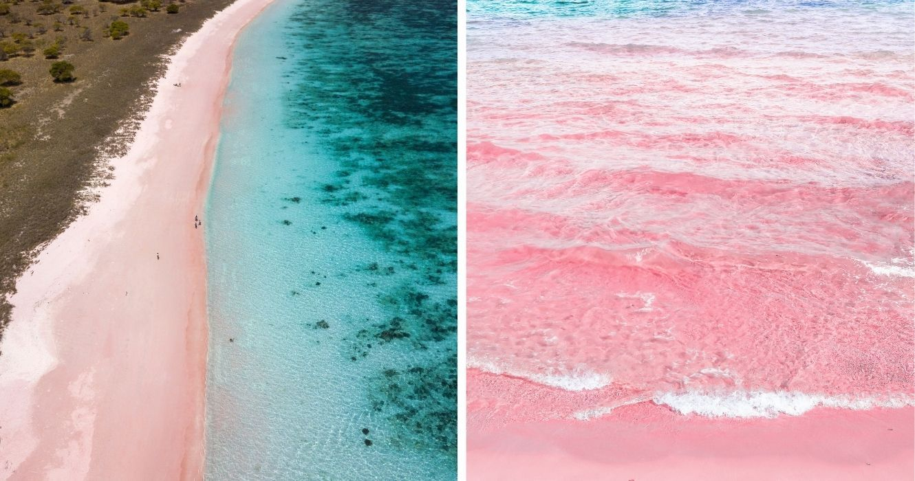 Harbour Island: Everything To Know About Visiting This Pink Sand Beach From Florida